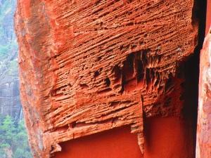 Delicate HoneyComb featured rock